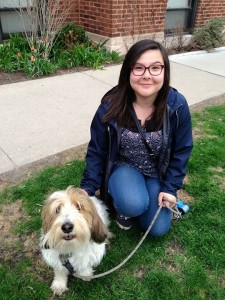 Chicago Dog Walking Pet Sitting North Center Lincoln Square Andersonville